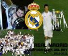 Real Madrid Copa del Rey 2010-2011 champion