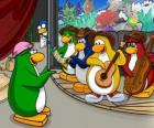 The Penguin Band, Billy G on drums and flute, Petey K on piano and accordion, Bob on bass and guitar Franky.