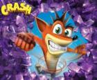 Crash Bandicoot, protagonist of the video game Crash Bandicoot