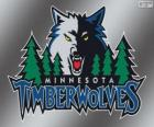 Minnesota Timberwolves logo, NBA team. Northwest Division, Western Conference