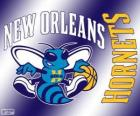 Logo New Orleans Hornets, NBA team. Southwest Division, Western Conference