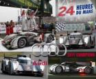 2011 24 Hours of Le Mans Champions Audi R18 TDI