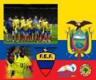 Selection of Ecuador, Group B, Argentina 2011