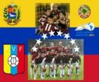 Selection of Venezuela, Group B, Argentina 2011