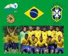 Brazil National Team, Group B, Argentina 2011