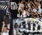Copa Libertadores 2011 champion Santos FC