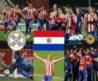 Finalist Paraguay, Copa América Argentina 2011