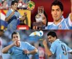 Luis Suarez best player in the Copa America 2011