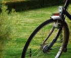 Front wheel of a bike ride