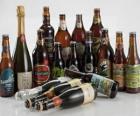 22 Brazilian beers