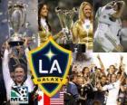 LA Galaxy, 2011 MLS champion