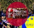 2011 FIFA Fair Play Award for the Japan Football Association