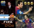 FIFA Ballon d'Or 2011 winner Lionel Messi