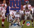 New York Giants NFC Champion 2011
