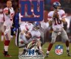 New York Giants NFC Champion 2011