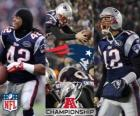 New England Patriots AFC champion 2011