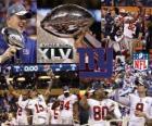 New York Giants Super Bowl 2012 champion