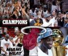 Miami Heat 2012 NBA Champion