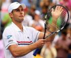 Andy Roddick announced his retirement from professional tennis on September 5, 2012