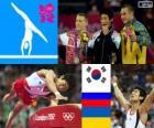 Men's vault artistic gymnastics LDN 12