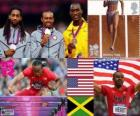 Men's 110 metres hurdles London 2012