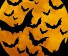 Bats for the celebration of Halloween
