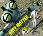 Grey Matter, Ben 10