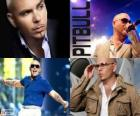 Pitbull (Armando Christian Perez), is a music producer of Cuban descent