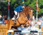 Show jumping. The rider and the horse in a jump