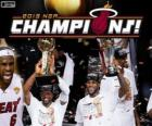 Miami Heat 2013 NBA Champions