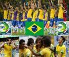 Brazil Cup FIFA Confederations 2013