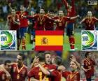 Spain 2013 FIFA Confederations Cup