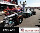 Nico Rosberg celebrates his victory in the 2013 British Grand Prix