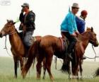 Xilingol horse originating in Mongolia