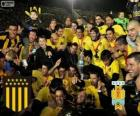 Peñarol of Montevideo, Champion First Division of football 2012-2013, Uruguay