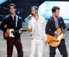 Jonas Brothers 2013