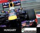 Sebastian Vettel - Red Bull - Hungarian Grand Prix 2013, 3rd classified