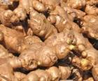 Ginger or ginger root