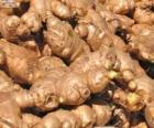 Ginger or ginger root