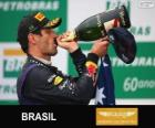 Mark Webber - Red Bull - 2013 Brazilian Grand Prix, 2º classified