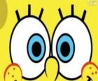 The eyes of SpongeBob