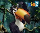 Rafael, the toucan