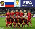 Selection of Russia, Group H, Brazil 2014