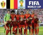 Selection of Belgium, Group H, Brazil 2014