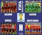Group H, Brazil 2014