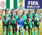 Selection of Nigeria, Group F, Brazil 2014