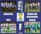 Group F, Brazil 2014