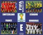 Group E, Brazil 2014