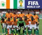 Selection of Ivory Coast, Group C, Brazil 2014