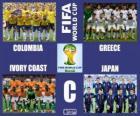 Group C, Brazil 2014